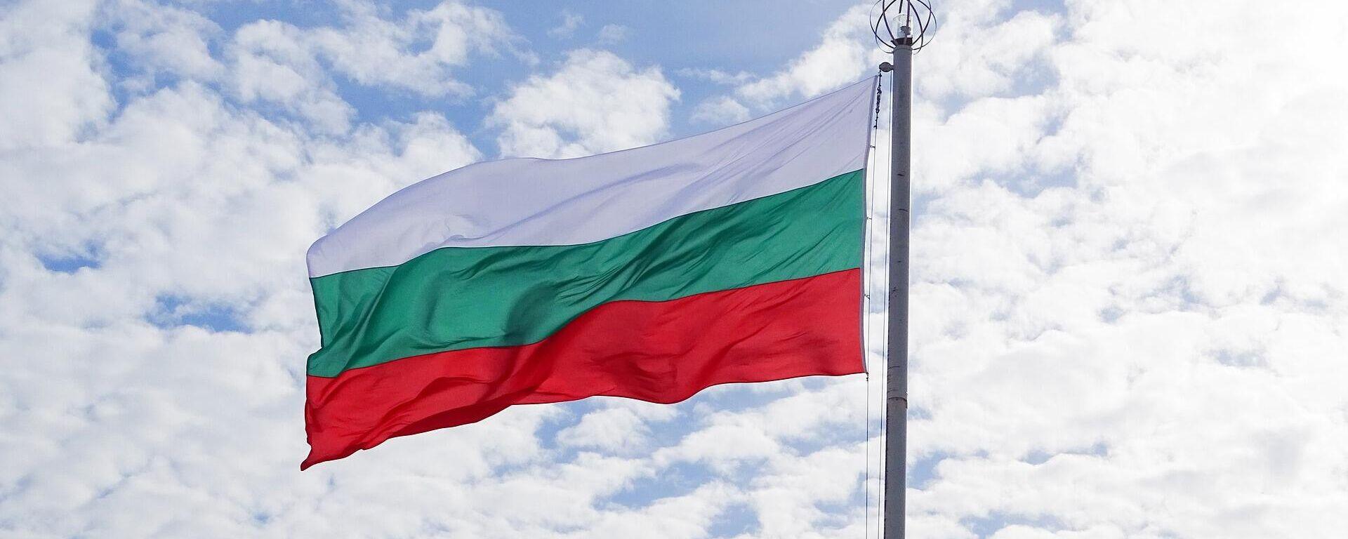 Bulgarische Flagge (Symbolbild) - SNA, 1920, 04.04.2021