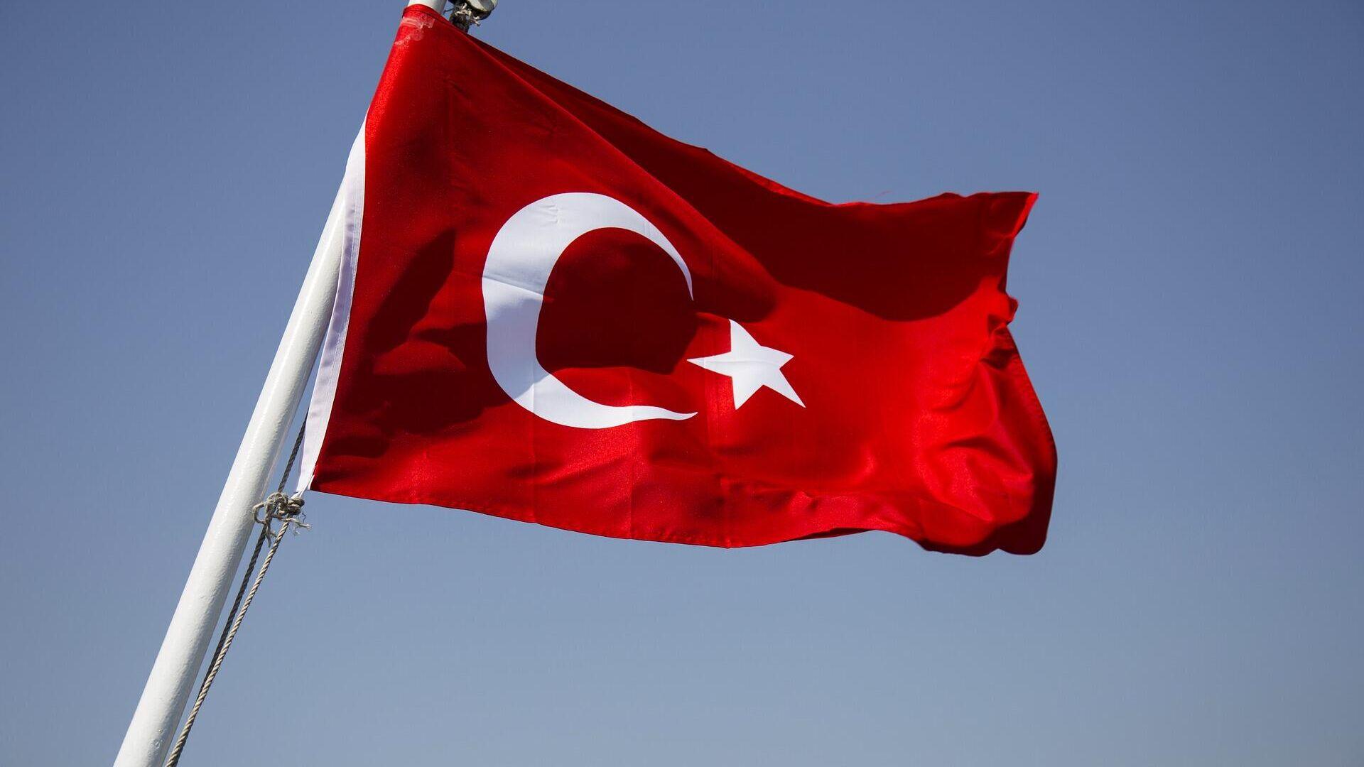 Türkische Flagge, Symbolbild - SNA, 1920, 18.07.2021