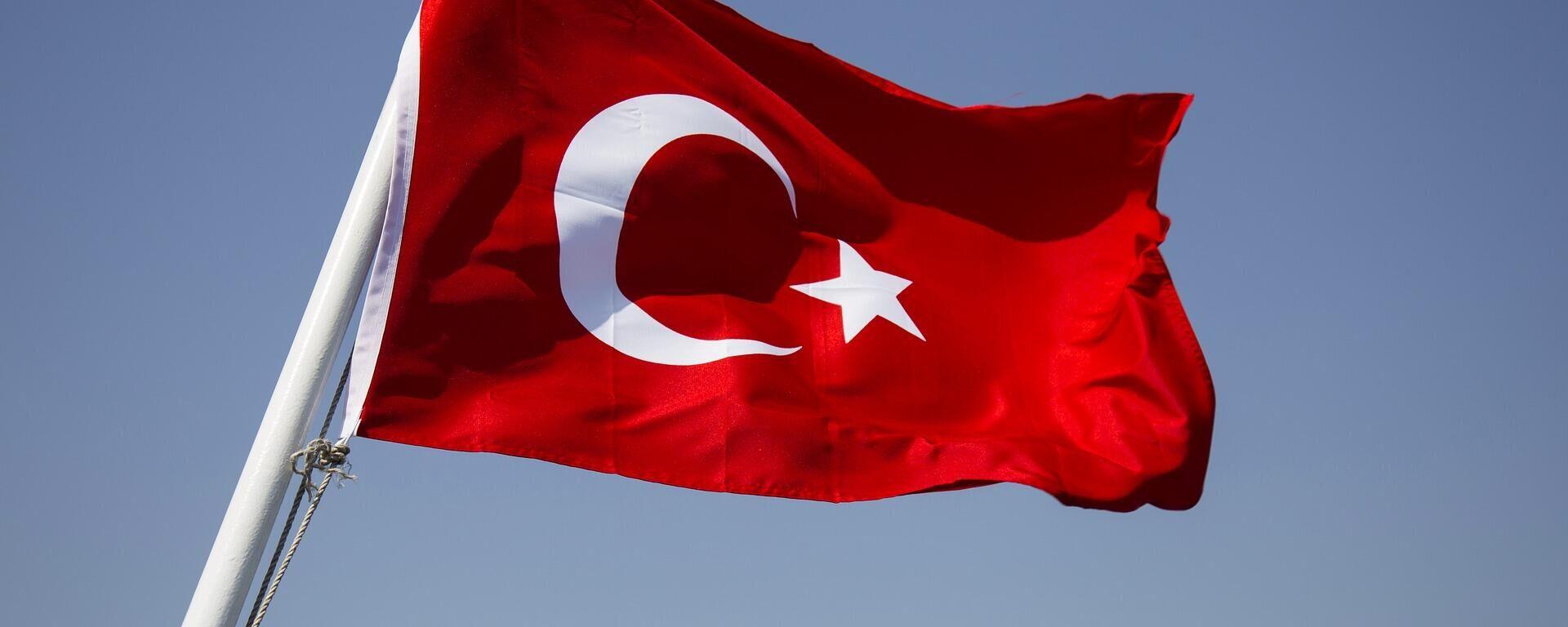 Türkische Flagge, Symbolbild - SNA, 1920, 15.12.2020
