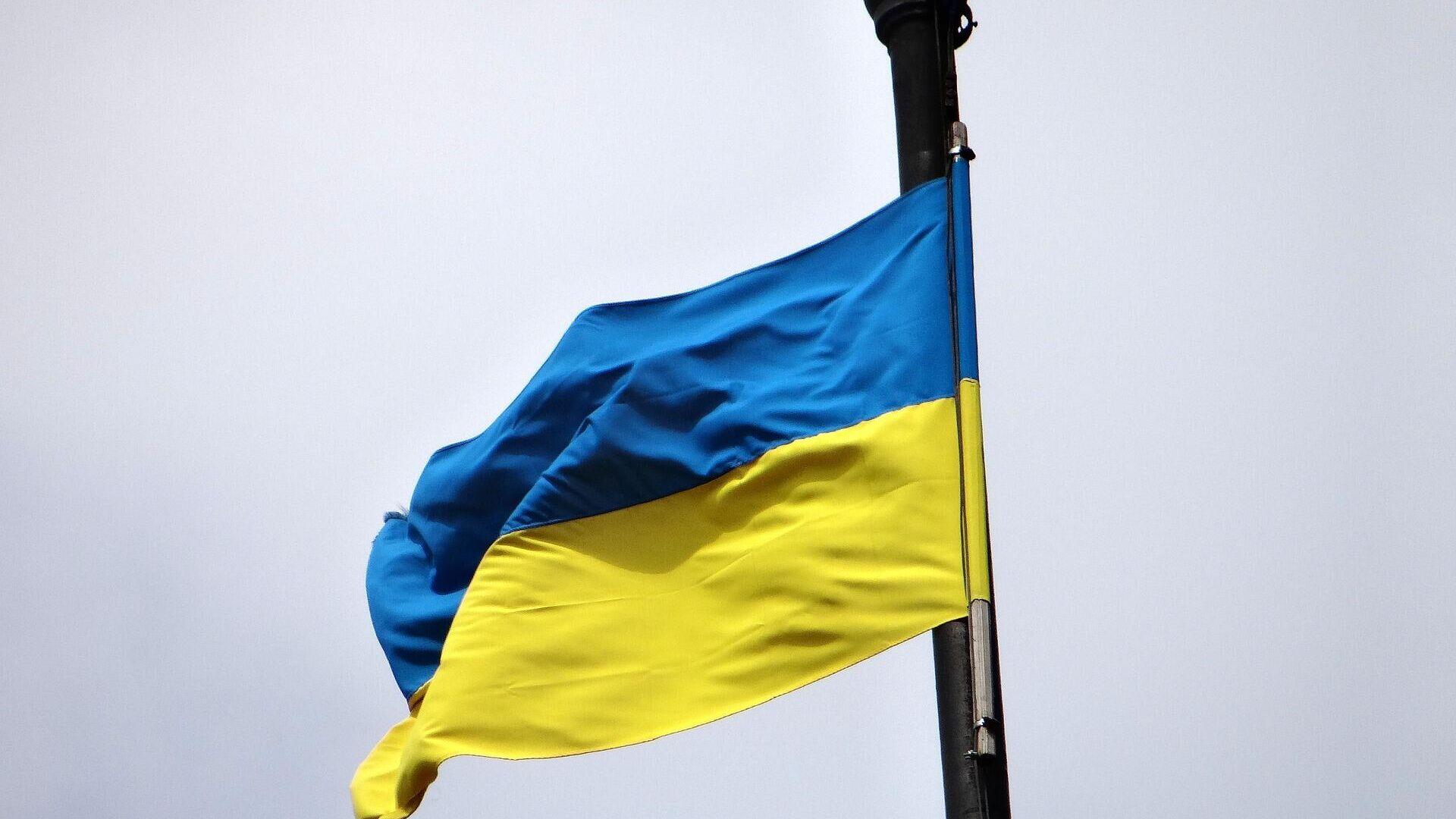Ukrainische Flagge  - SNA, 1920, 02.05.2021