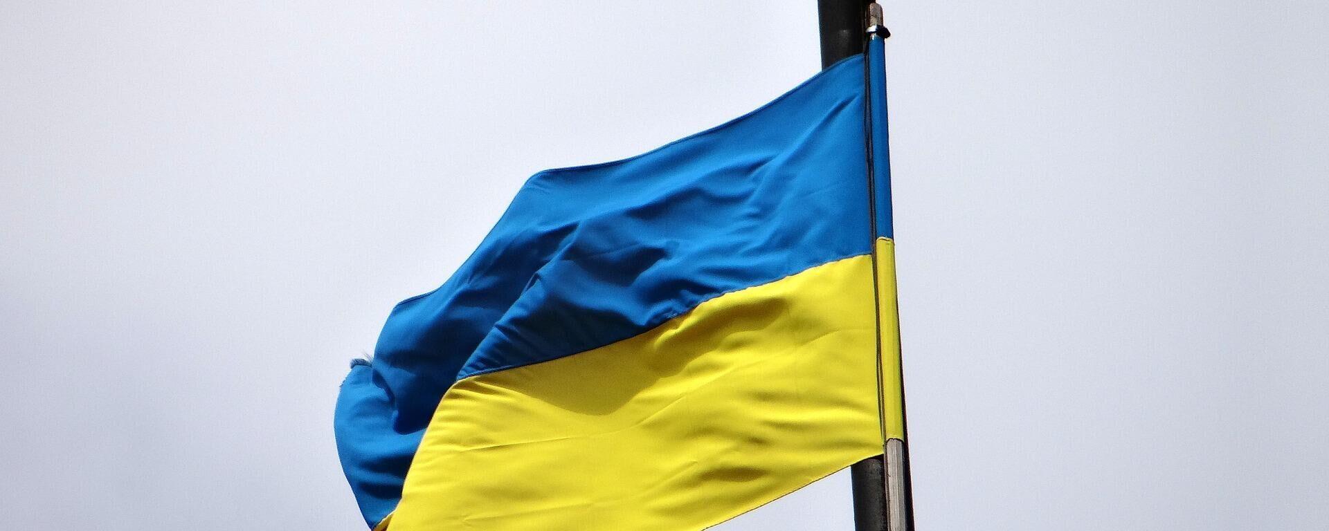 Ukrainische Flagge  - SNA, 1920, 27.07.2021
