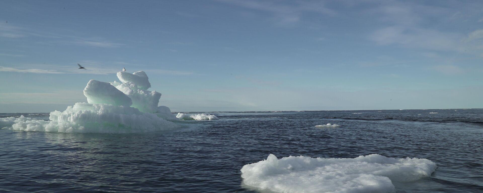 Meereis der Arktis (Symbolbild) - SNA, 1920, 08.01.2021
