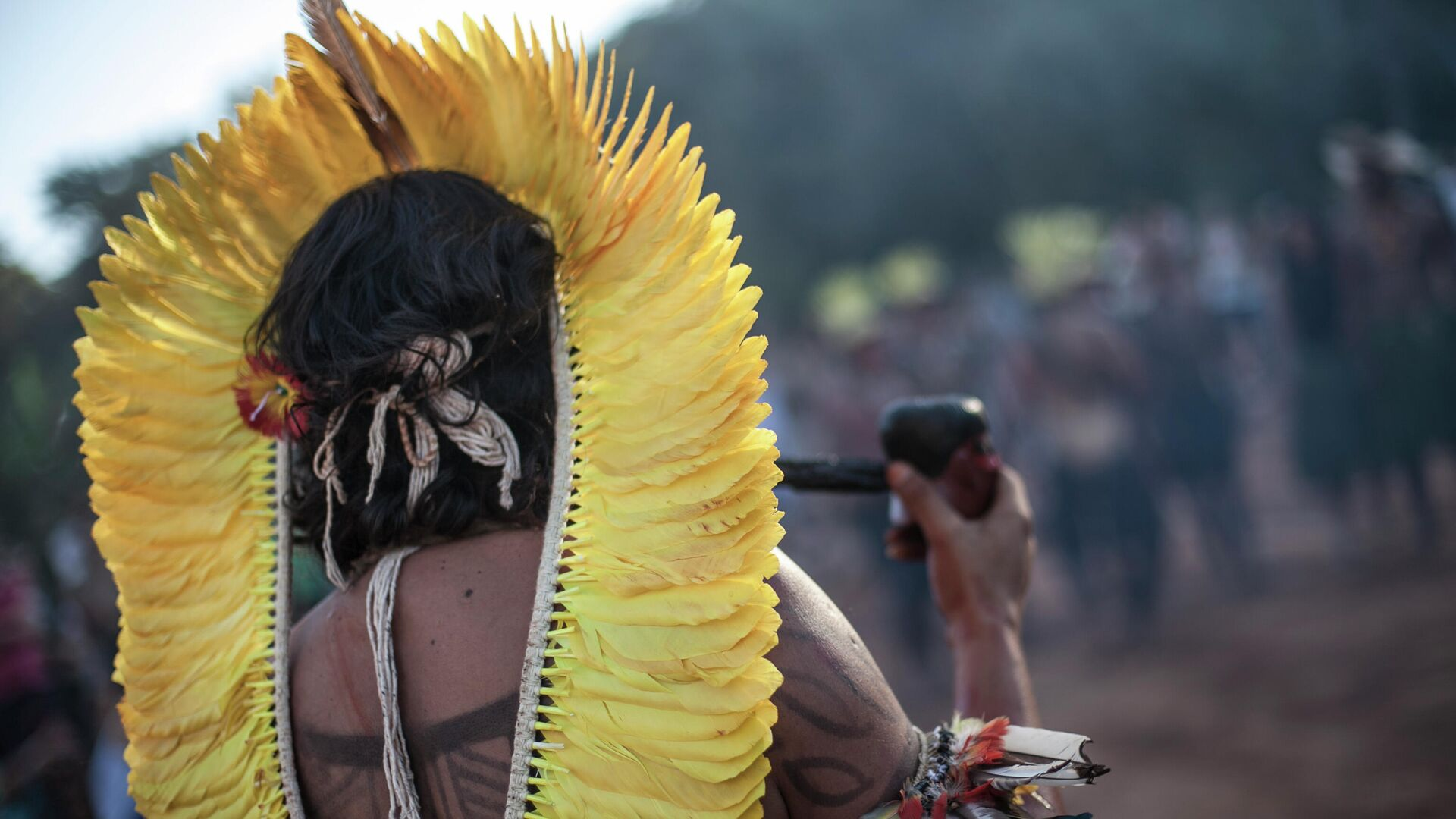 Indigener in Brasilien (Archiv) - SNA, 1920, 20.08.2021