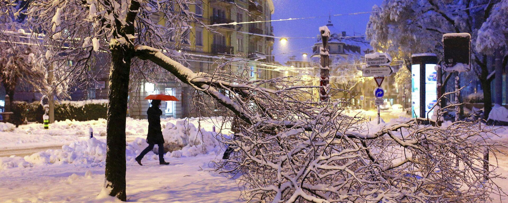 Folgen eines starken Schneefalls in Zürich, 15. Januar 2020 - SNA, 1920, 15.01.2021