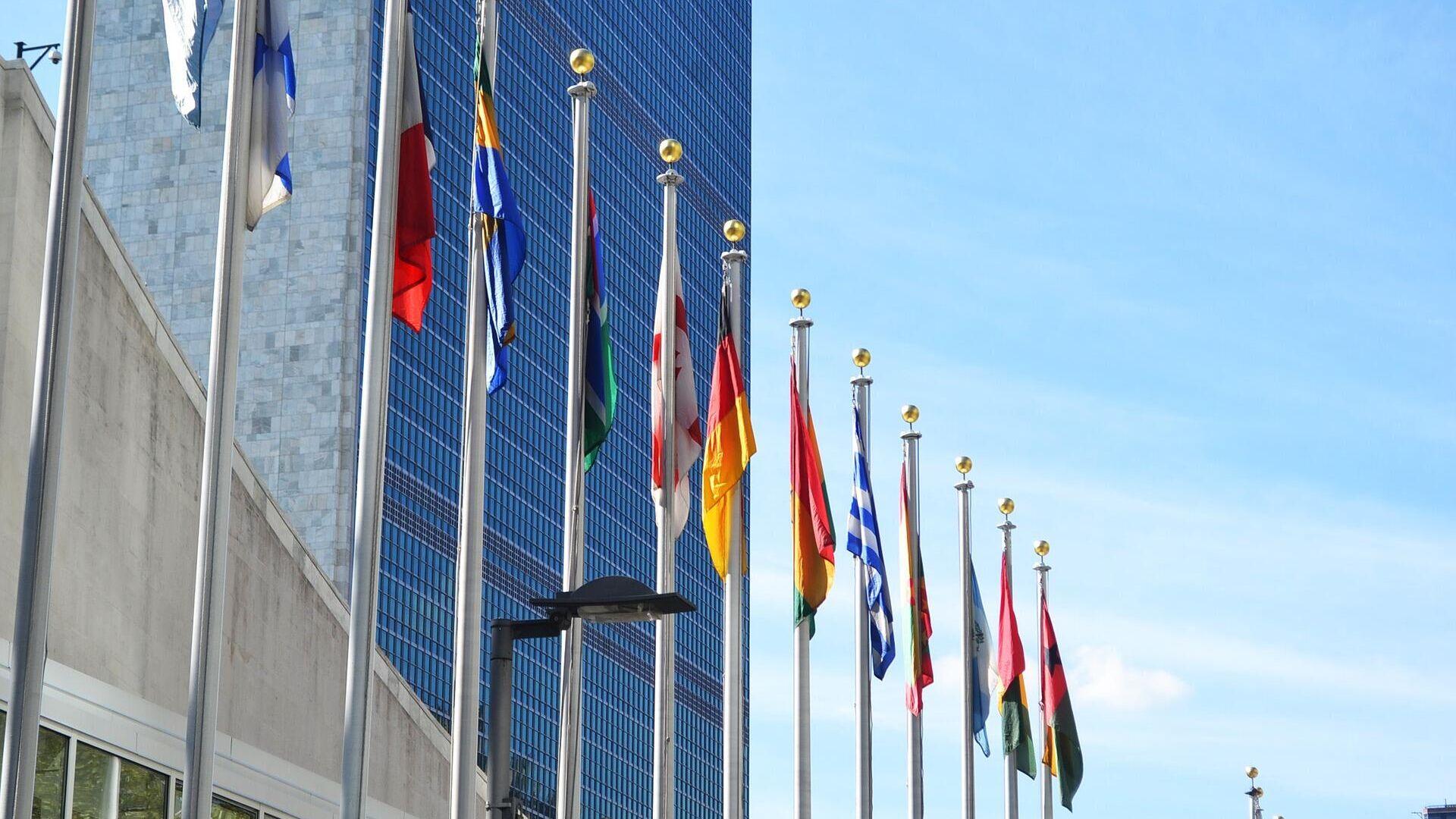Vereinte Nationen (Symbolbild) - SNA, 1920, 27.02.2021