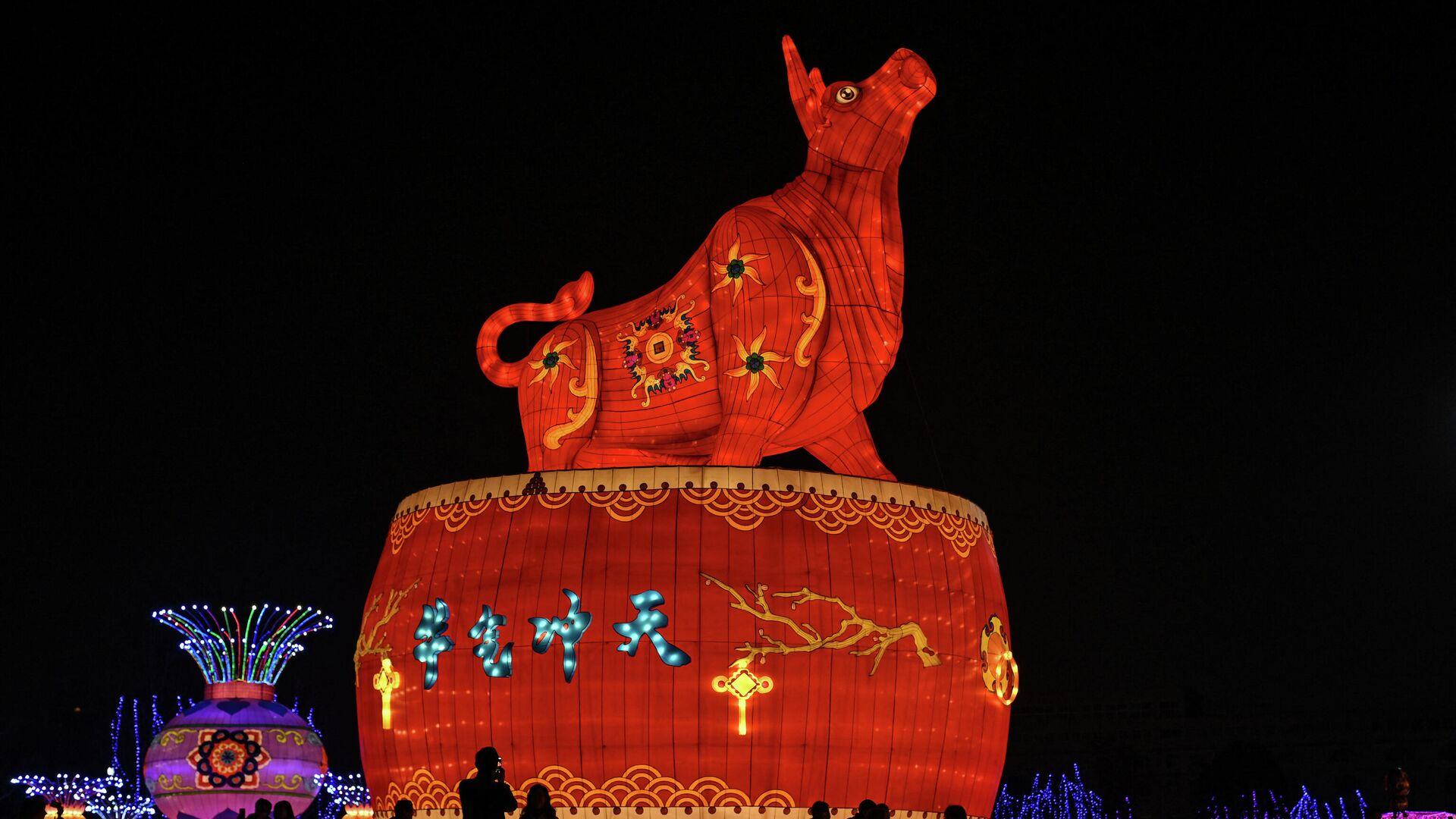 Dekorationen zum chinesischen Neujahrsfest (Wuhan, 11.02.2021) - SNA, 1920, 12.02.2021