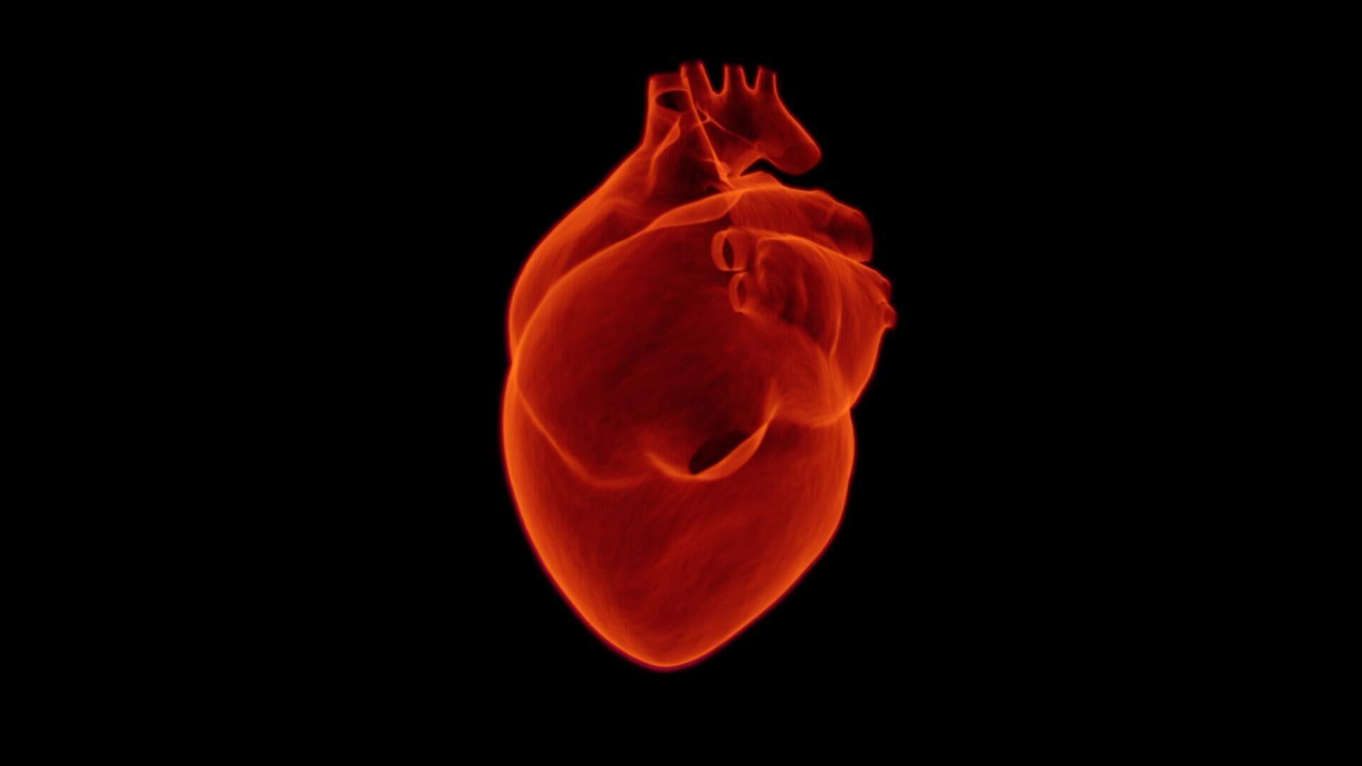 Menschliches Herz (Symbolbild) - SNA, 1920, 28.09.2021