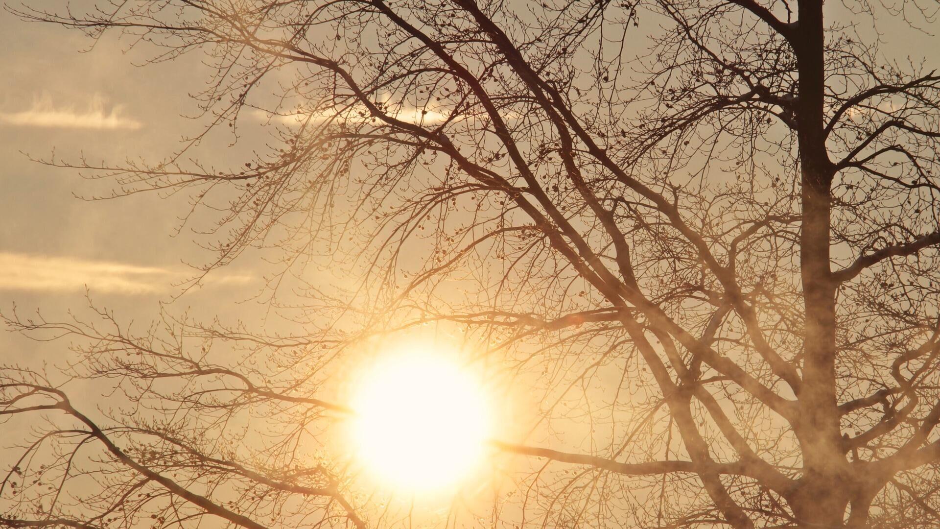 Sonne (Symbolbild) - SNA, 1920, 27.02.2021