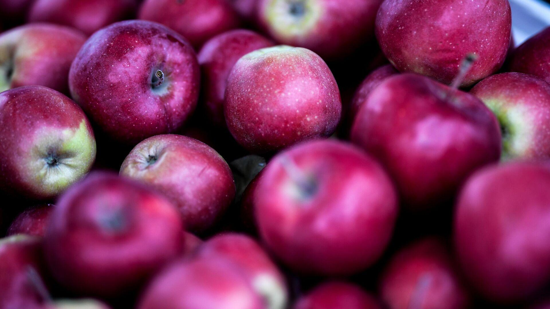 Äpfel (Symbolbild) - SNA, 1920, 27.09.2021