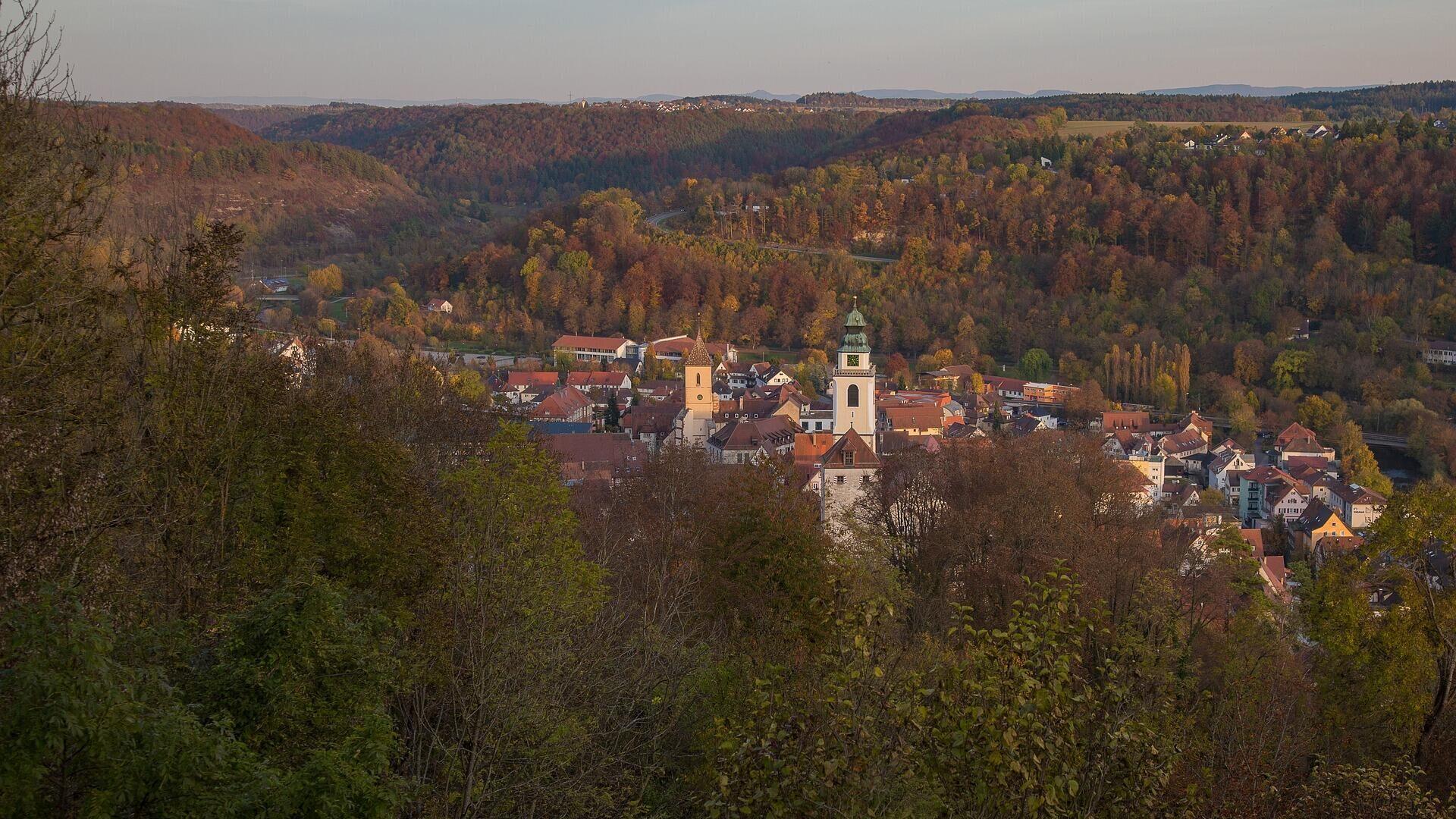 Schwarzwald in Baden-Württemberg (Archivbild) - SNA, 1920, 10.03.2021