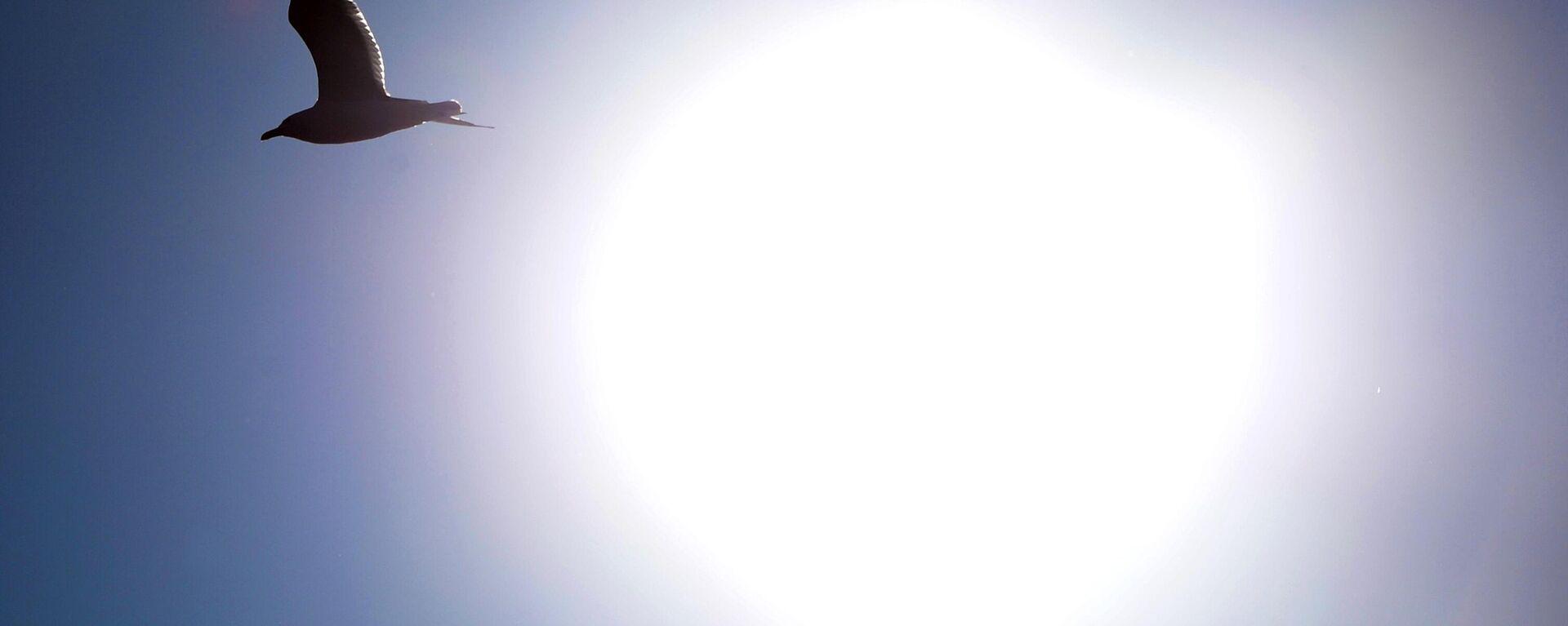 Sonne. Symbolbild - SNA, 1920, 28.03.2021