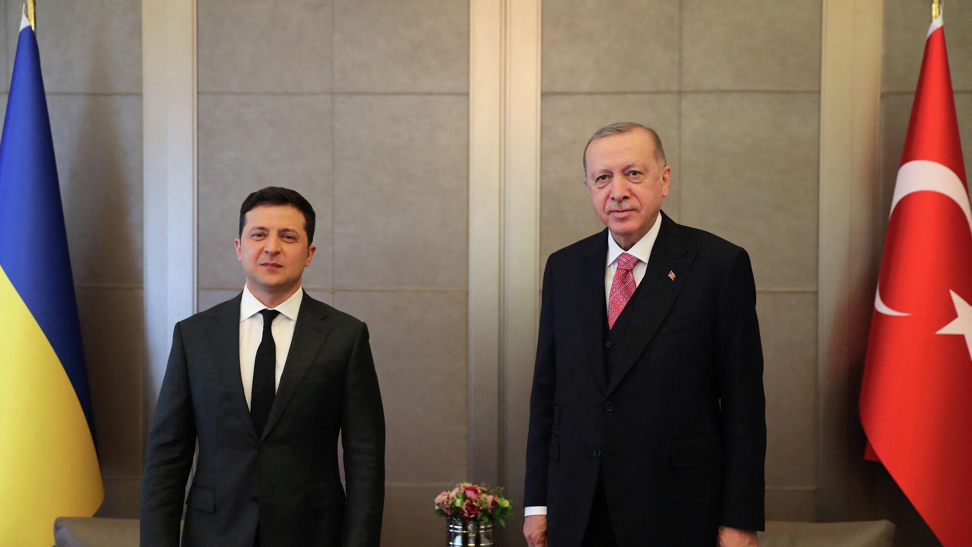 Der türkische Präsident Recep Tayyip Erdogan und der ukrainische Präsident Wladimir Selenski - SNA, 1920, 10.04.2021