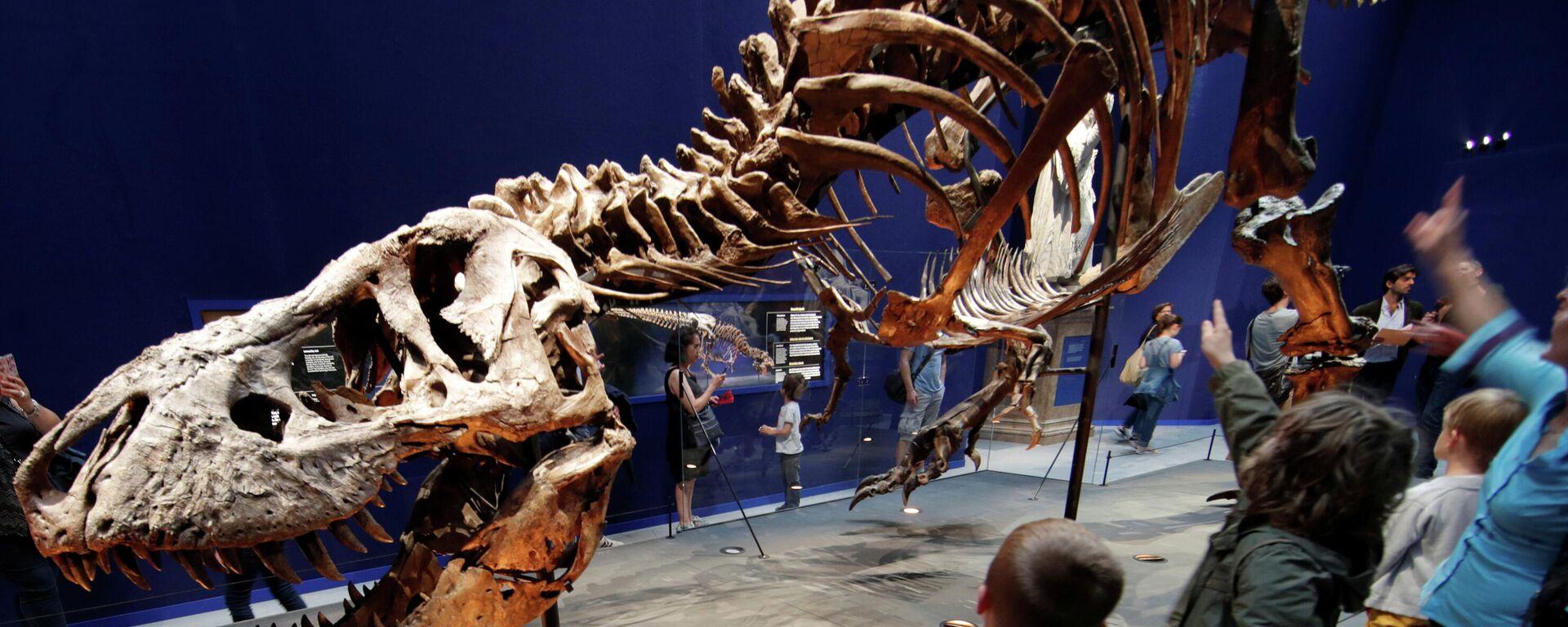 Tyrannosaurus rex - SNA, 1920, 21.04.2021