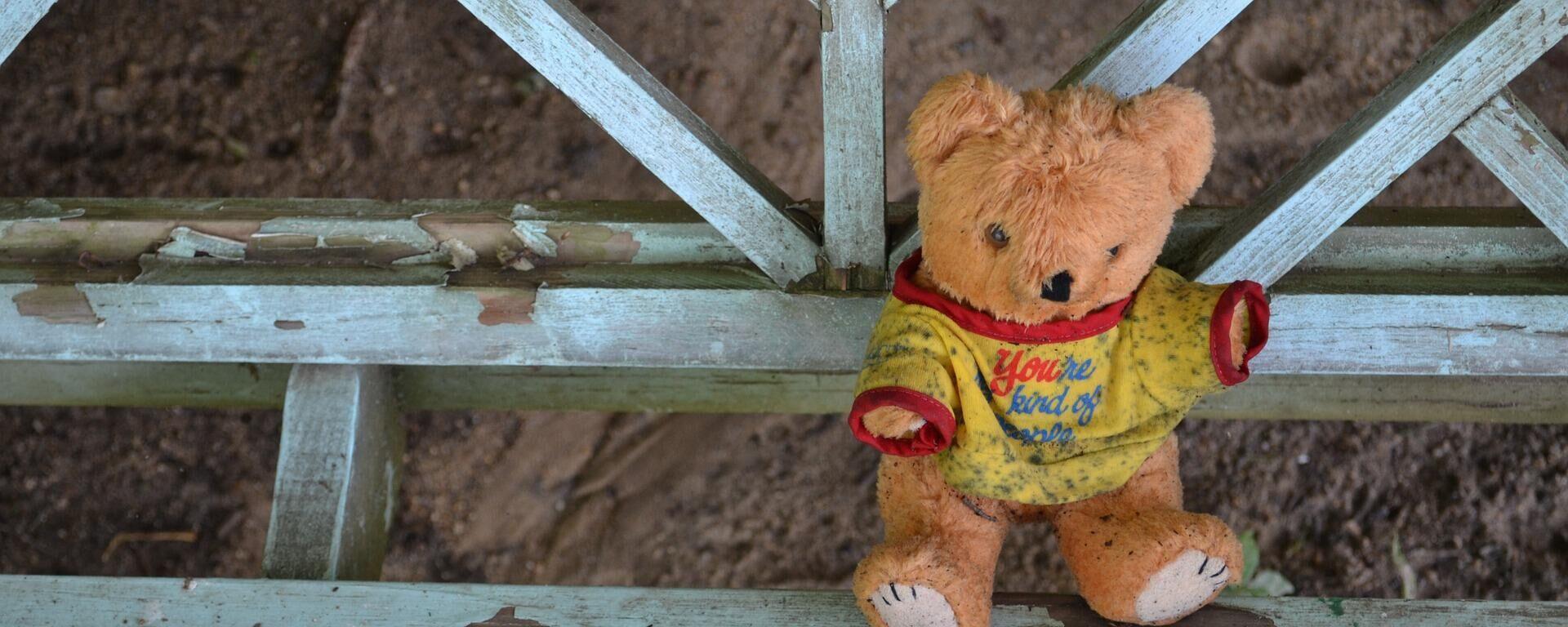 Teddybär (Symbolbild) - SNA, 1920, 01.06.2021