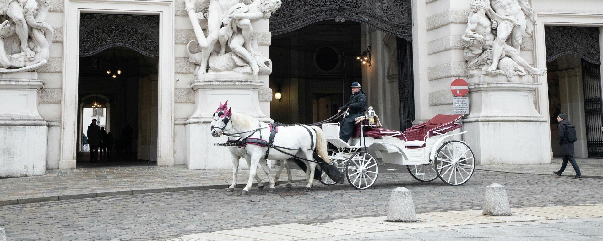Fiaker vor dem Hofburg in Wien - SNA, 1920, 17.07.2021