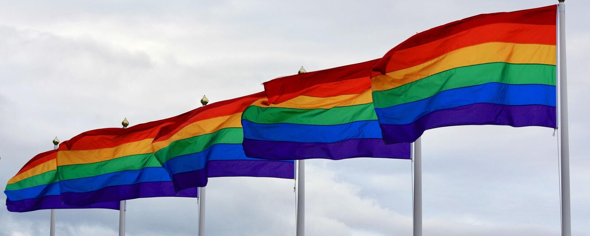 LGBT-Flagge (Symbolbild) - SNA, 1920, 28.06.2021