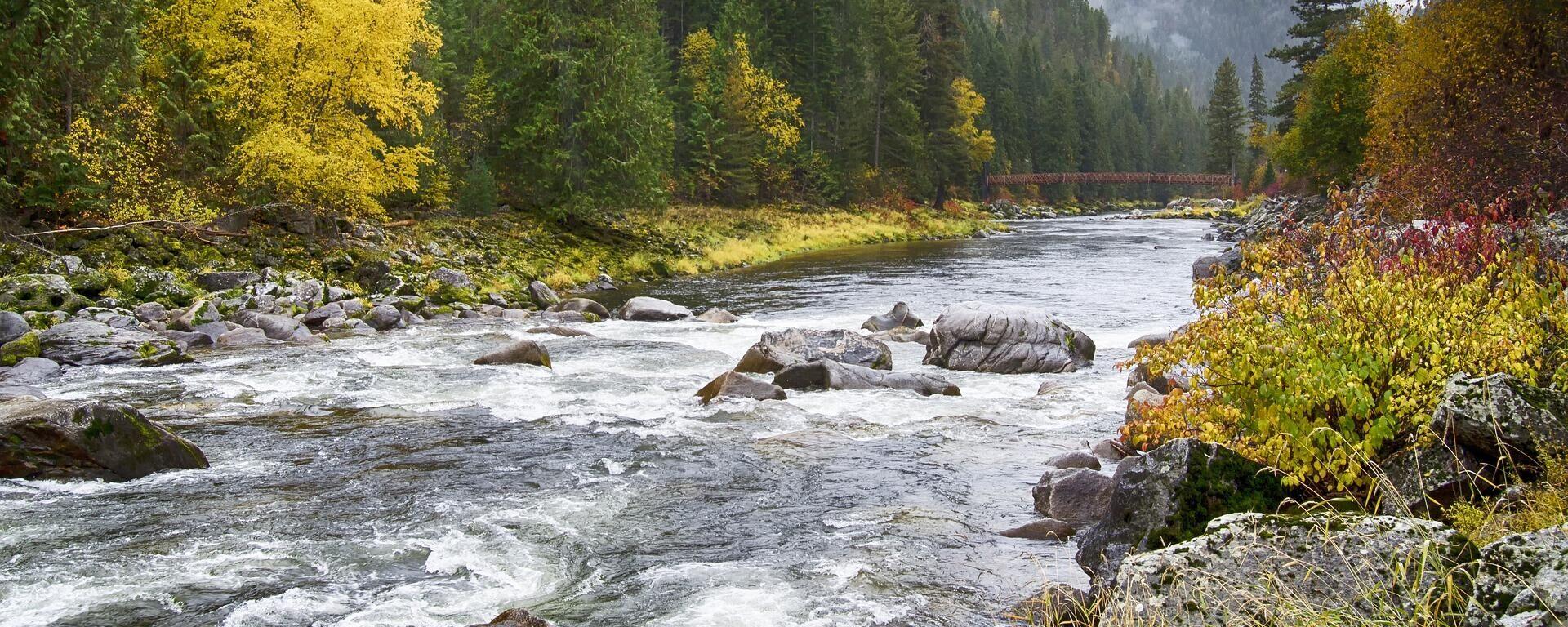 Ein Fluss (Symbolbild) - SNA, 1920, 08.07.2021