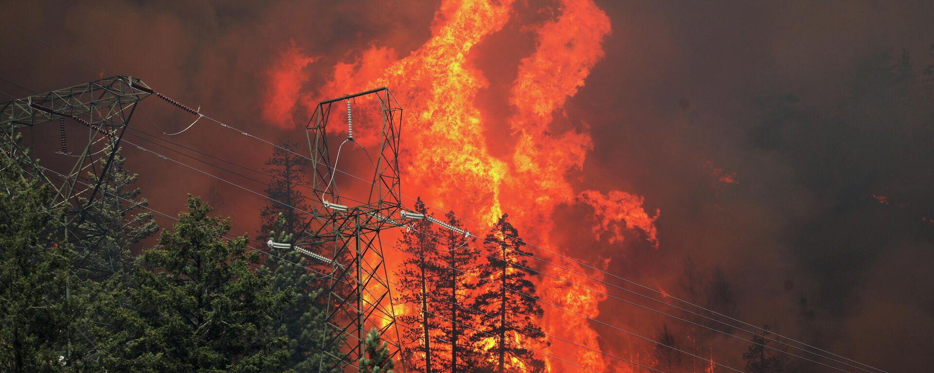 Waldbrände in den USA - SNA, 1920, 18.07.2021