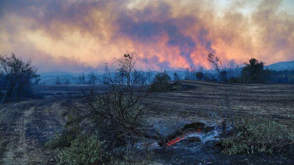 Лесной пожар в Турции - SNA