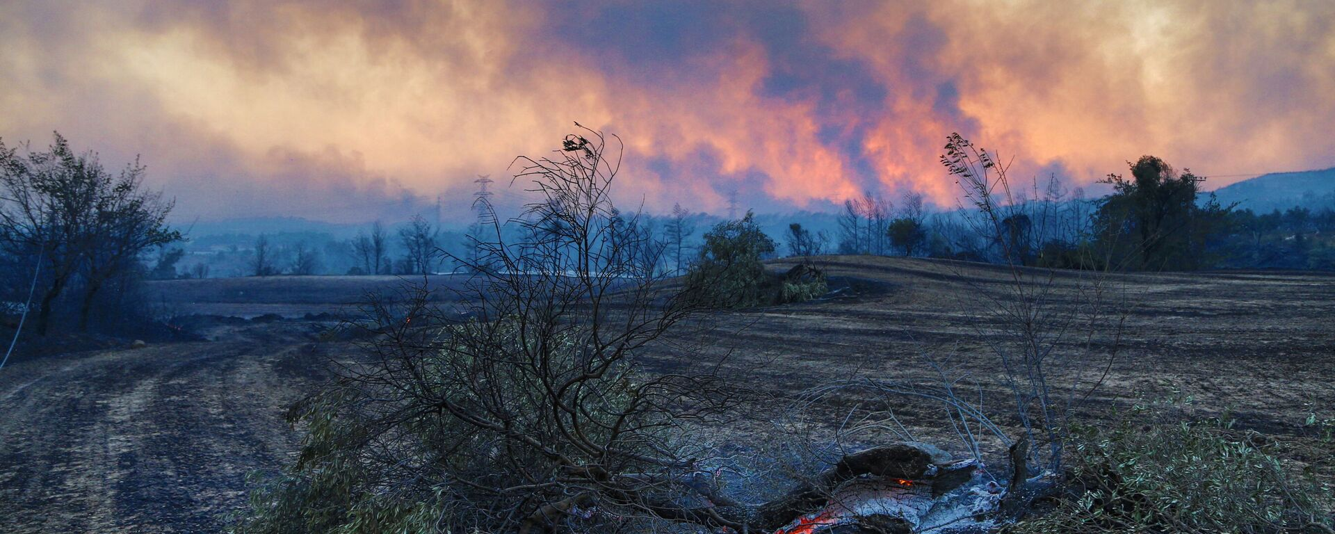 Waldbrand in der Türkei - SNA, 1920, 29.07.2021
