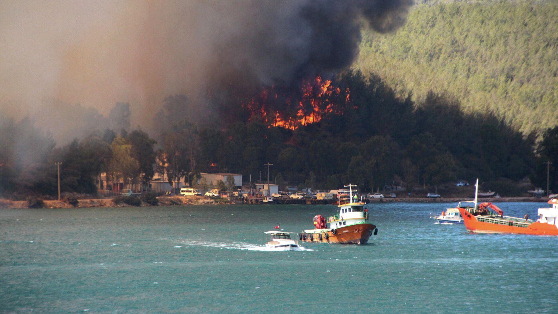 Waldbrände in der Türkei - SNA, 1920, 31.07.2021