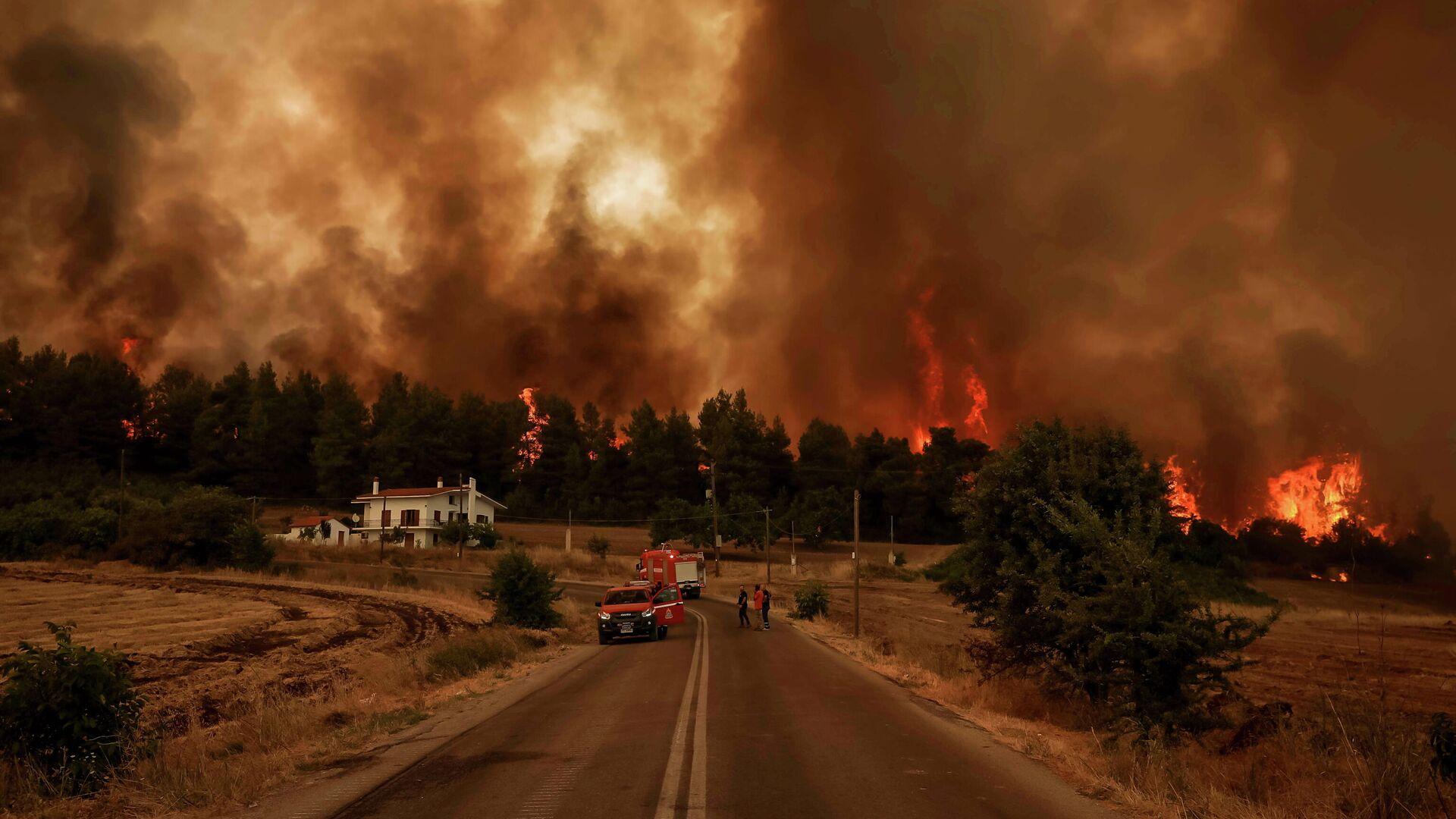 Waldbrände in Griechenland - SNA, 1920, 09.08.2021