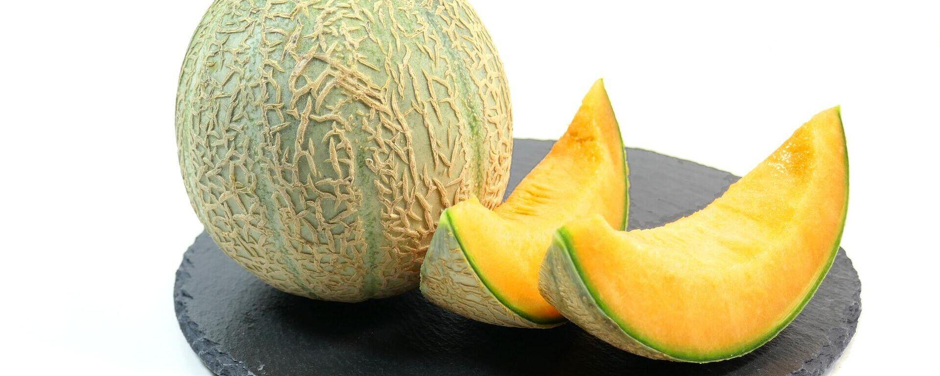 Melone (Symbolbild) - SNA, 1920, 28.08.2021
