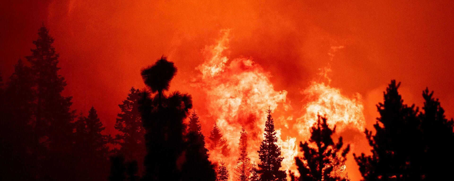 Waldbrände in Kalifornien - SNA, 1920, 30.08.2021