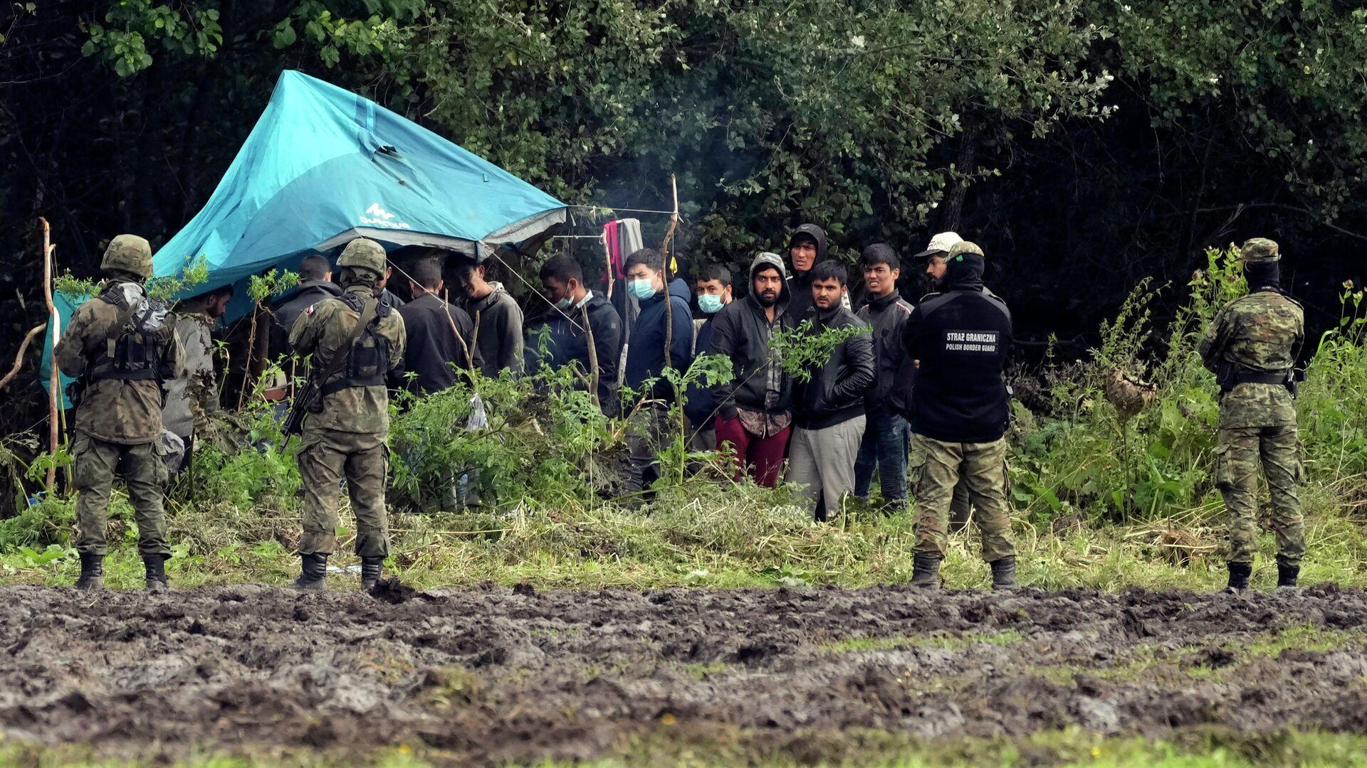 Illegale Migranten an der polnisch-weißrussischen Grenze. 1. September 2021 - SNA, 1920, 06.09.2021