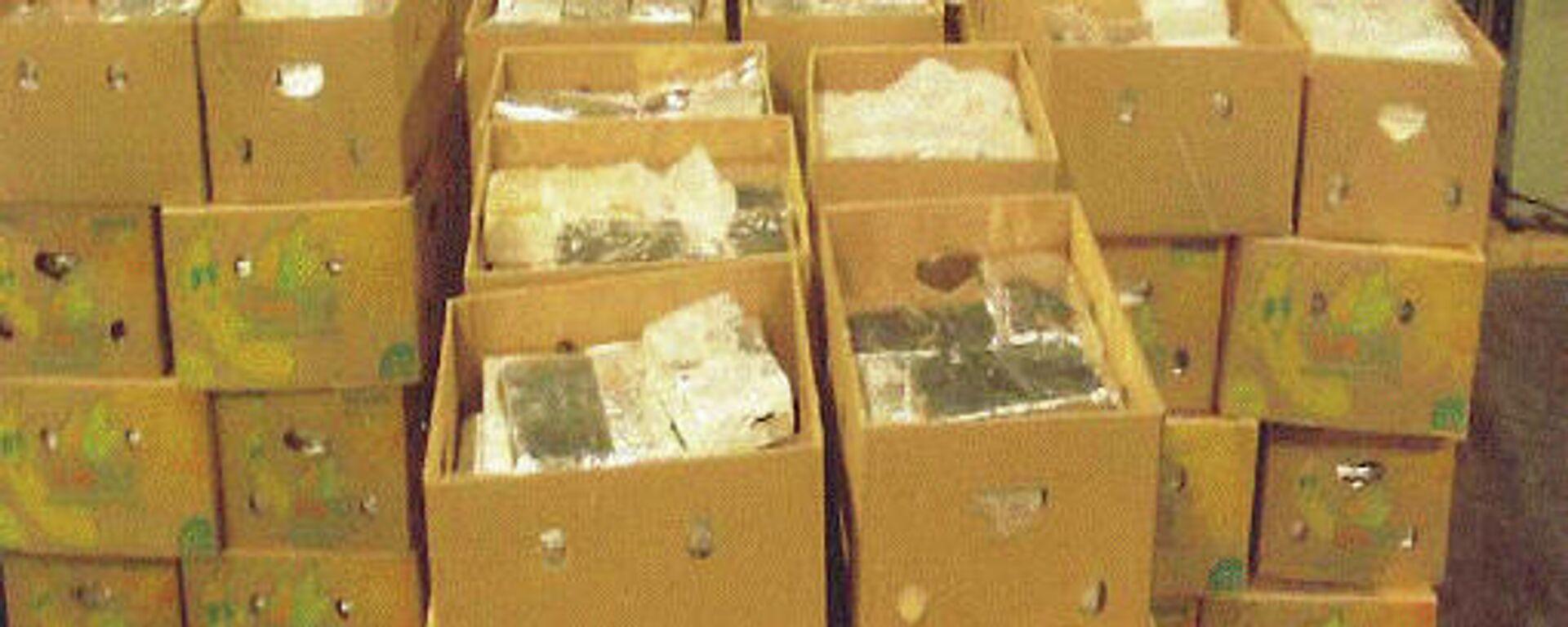 Eine im Hafen von Antwerpen beschlgnahmte Kokain-Lieferung (Arshivbild) - SNA, 1920, 08.09.2021