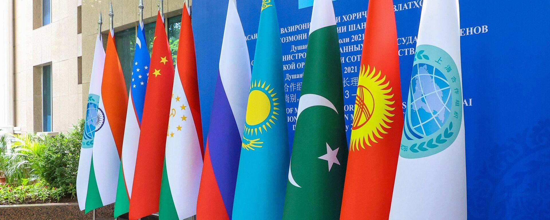 Flaggen der SOZ-Mitgliedsländer  - SNA, 1920, 17.09.2021