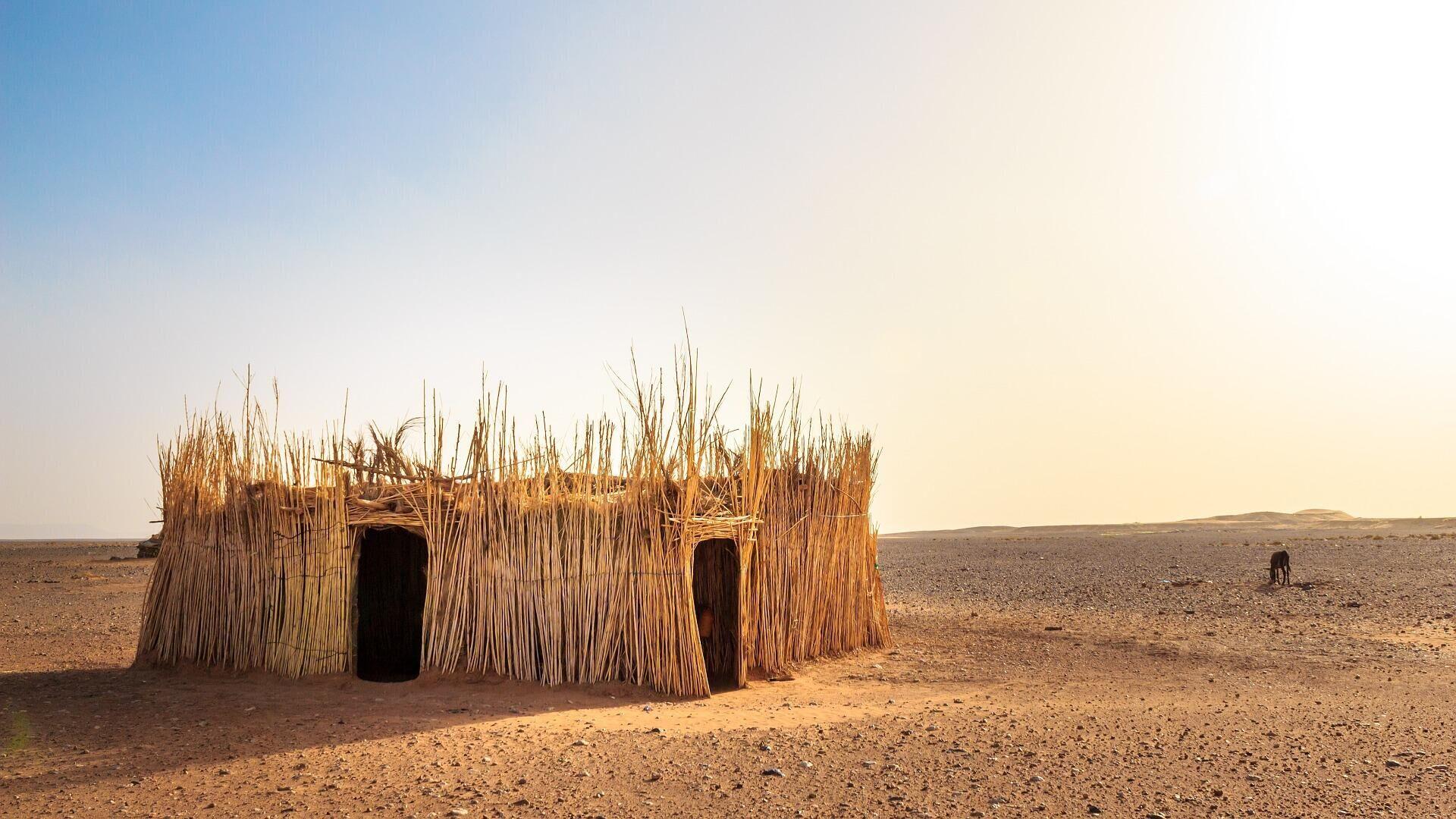 Wüste (Symbolbild) - SNA, 1920, 23.09.2021