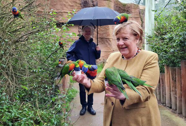 Bundeskanzlerin Angela Merkel mit Papageien. - SNA