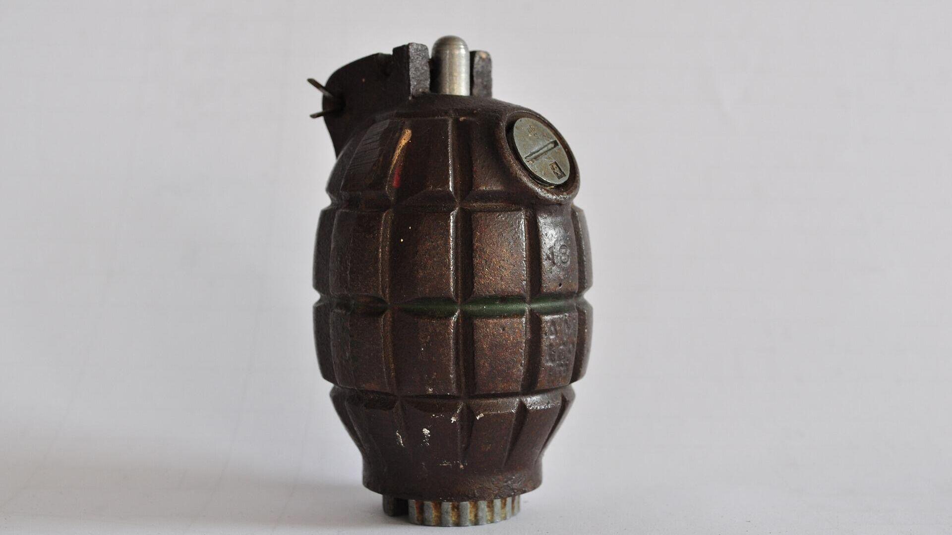 Handgranate (Symbolbild) - SNA, 1920, 27.09.2021