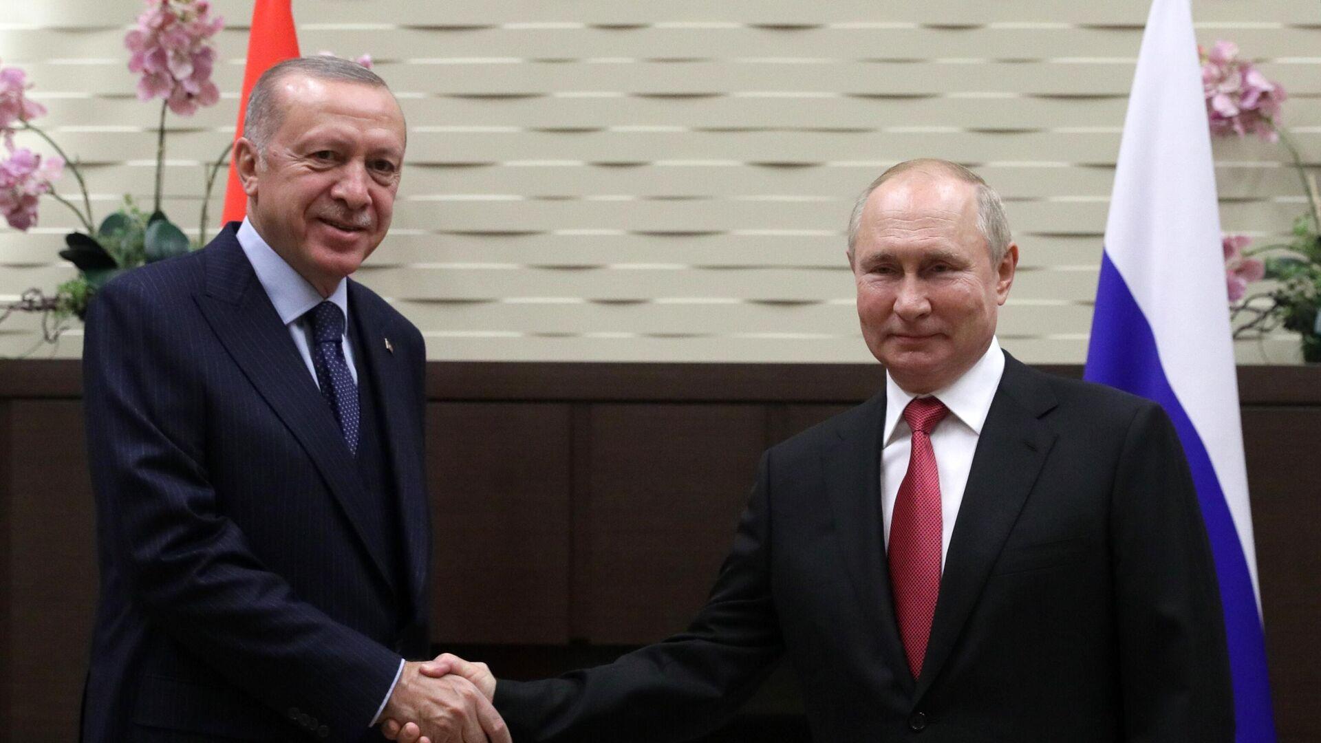 Treffen zwischen den Präsidenten Russlands und der Türkei, Wladimir Putin und Recep Tayyip Erdogan - SNA, 1920, 30.09.2021