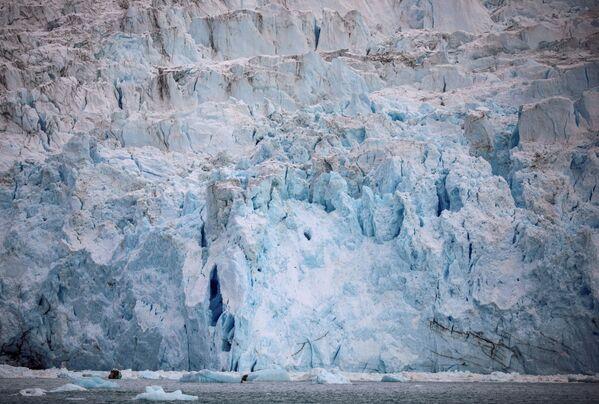 Der Gletscher Eqip Sermia in Grönland. - SNA